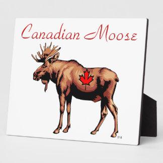 Canadian Moose Plaque