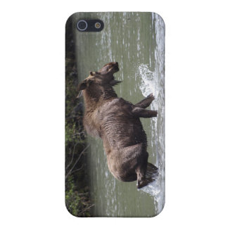 Canadian Moose Wildlife Animal Case For iPhone SE/5/5s
