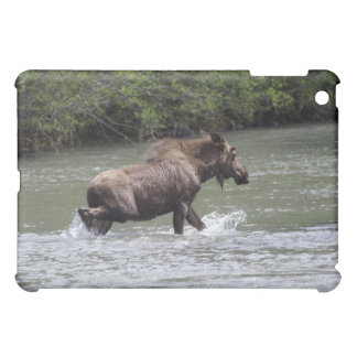 Canadian Moose Wildlife Animal Case For The iPad Mini