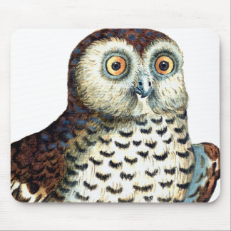 Canadian Owl Mouse Pad