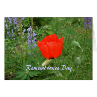 Canadian Remembrance Day- November+11th Poppy Card