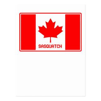 Canadian Sasquatch Post Card