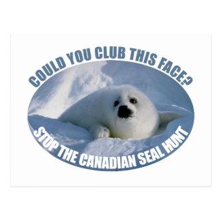 Canadian Seal Hunt Postcards