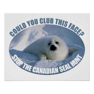 Canadian Seal Hunt Poster