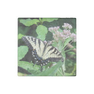 Canadian Tiger Swallowtail Stone Magnet
