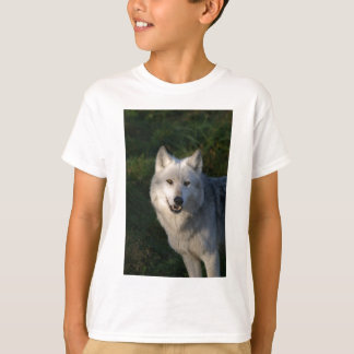 Canadian Timber Wolf Kids Tee Shirt