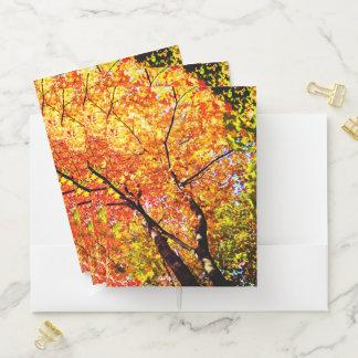 Canadian Trees Pocket Folder
