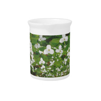 CANADIAN Wild WHITE Flowers - Lowprice GIFTS Beverage Pitcher