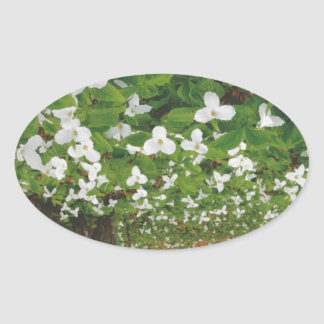 CANADIAN Wild WHITE Flowers - Lowprice GIFTS Oval Sticker