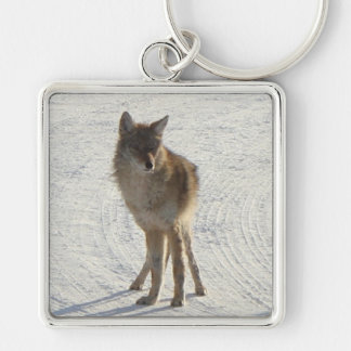 Canadian WIldlife - Coyote in Winter Keychains