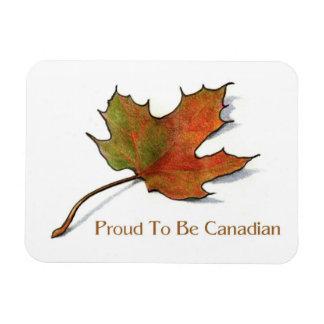 Canadiense orgulloso: Hoja de arce en lápiz del co Iman