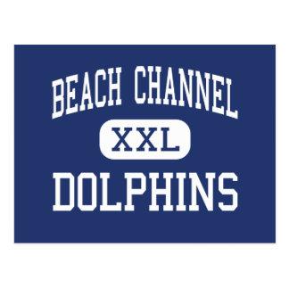 Canal de la playa - delfínes - alto - parque de Ro Tarjetas Postales