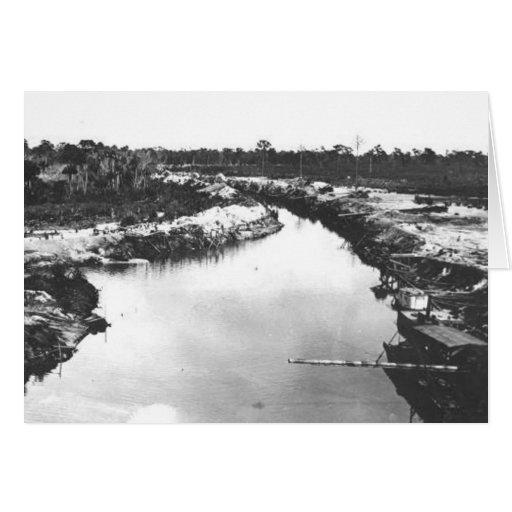 Canal del drenaje, la Florida Everglades, 1920 Tarjeta De Felicitación