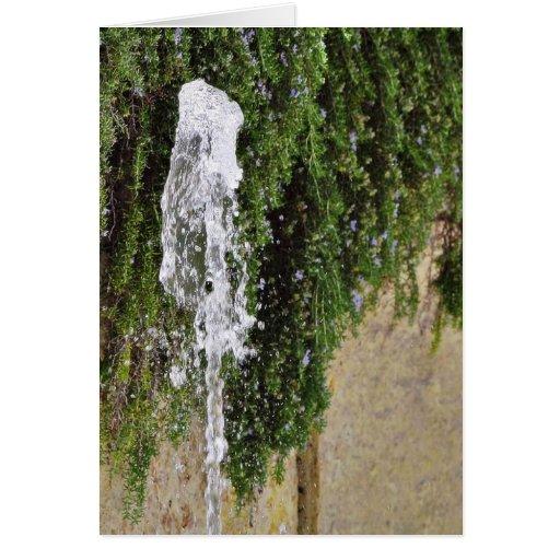 Canalón de agua de las fuentes felicitacion