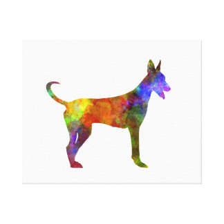 Canarian Warren Hound in watercolor Canvas Print
