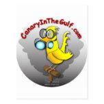 Canario en el golfo postales