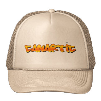canartic logo hat