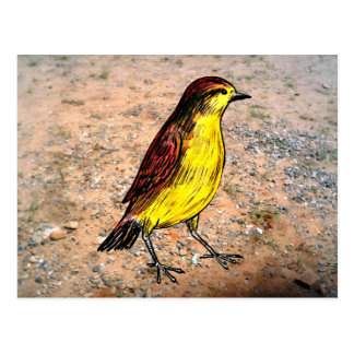 Canary Bird Postcard