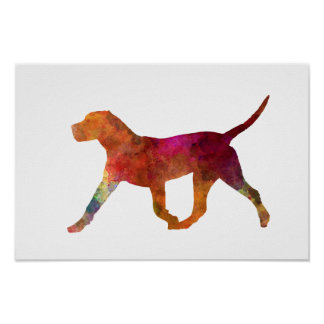 Canary bulldog in watercolor poster