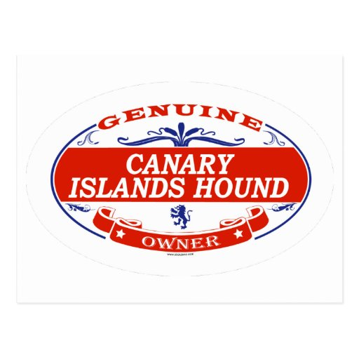 Canary Islands Hound  Postcard