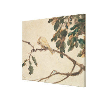 Canary on an Oak Tree Branch Canvas Print