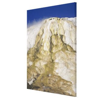 Canary Spring, Mammoth Hot Springs, Yellowstone Na Canvas Print