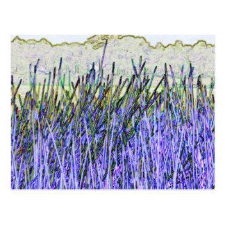 Cañas abstractas en colores púrpuras y blancos postal