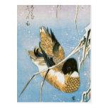 Cañas cargadas de la nieve de la natación del pato postales