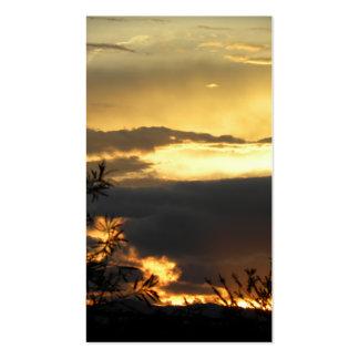 Canberra Summer Sunset Pack Of Standard Business Cards