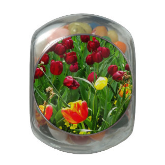 Canberra Tulips Jelly Belly Candy Jar