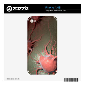 Cancer Cells iPhone 4S Skin
