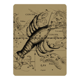 Cancer Constellation Hevelius 1690 June 21-July 22 Card