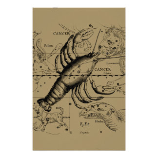 Cancer Constellation Hevelius 1690 June 21-July 22 Custom Flyer