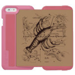 Cancer Constellation Hevelius 1690 June 21-July 22 iPhone 6/6s Wallet Case