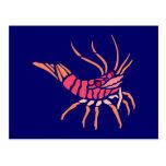 Cáncer crab crawfish tarjetas postales