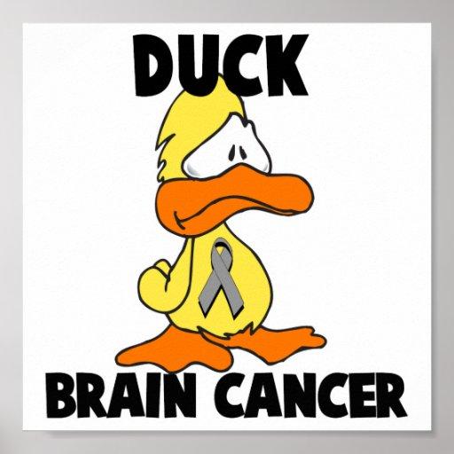 Cáncer de cerebro del pato posters