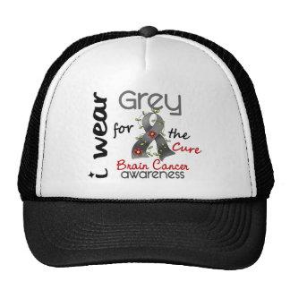 Cáncer de cerebro llevo el gris para la curación 4 gorro