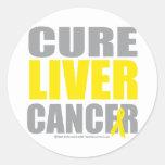 Cáncer de hígado de la curación etiqueta redonda