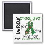 Cáncer de hígado llevo el verde esmeralda para mi  iman de frigorífico