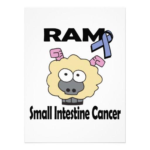 Cáncer del intestino delgado de RAM Invitaciones Personalizada