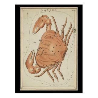 Cáncer el cangrejo tarjeta postal