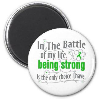 Cáncer hepático en la batalla imanes