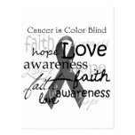 Cancer is Color BLind Post Cards