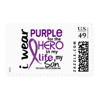 Cáncer pancreático para mi héroe mi hijo 2 sellos