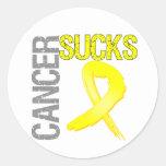 Cancer Sucks - Bladder Cancer Classic Round Sticker