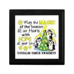 Cáncer testicular de los pingüinos del navidad cajas de joyas