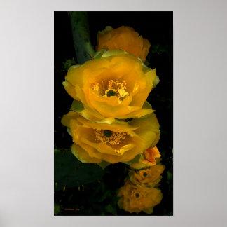 Canción de la flor del cactus póster