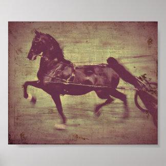 Canción de Saddlebred Poster