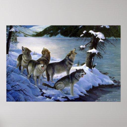 Canción del lobo, lobos posters