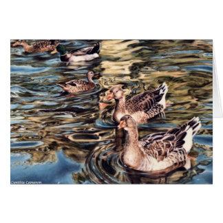 Canción del otoño - gansos y patos en la charca tarjetón